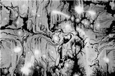 黑白树木纹理贴图
