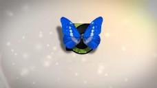 会声会影创意蝴蝶LOGO演绎片头模板