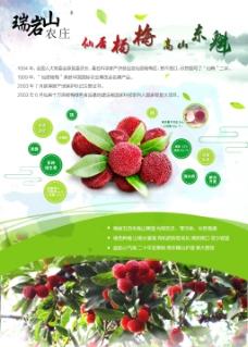 杨梅宣传海报