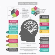 脑图模板图和不同的选择