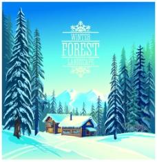冬天森林里的风景