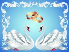 婚礼卡通白天鹅矢量素材