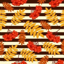 果实和叶子背景