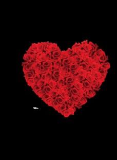 玫瑰花心形