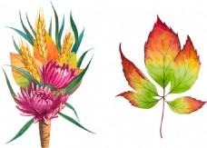 水彩绘花朵和叶子插画