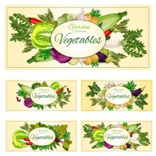 多种健康蔬菜水果海报卡片背景矢量