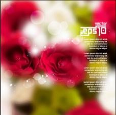 梦幻粉色玫瑰花背景图