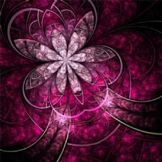 紫夜线条花朵背景图