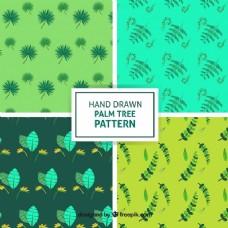 棕榈叶的装饰图案