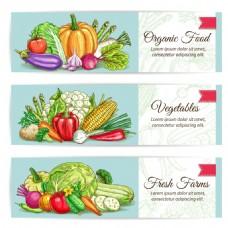 健康蔬菜水果海报卡片背景矢量