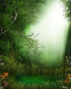 绿色树林H5背景图