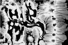 黑白散状纹理贴图
