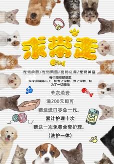 宠物店促销海报设计
