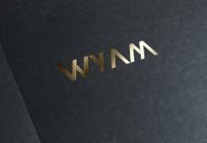 钻石logo标志