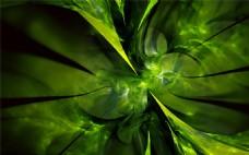 绿色树叶纹科技背景图