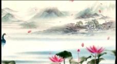 水墨荷花明月湖畔背景视频素材