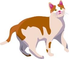 卡通猫咪素材设计
