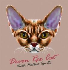 长耳朵猫咪宠物猫头像品种矢量