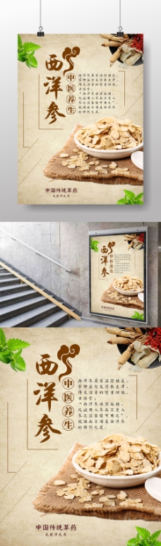 西洋参中国传统药材海报