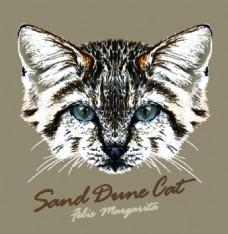斑纹猫咪宠物猫头像品种矢量