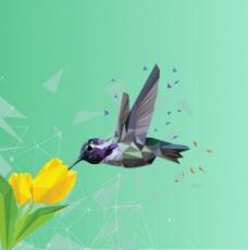 3D几何图形鸟与花背景图