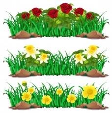 布什插图中的花卉种类