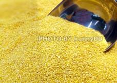 一堆黄小米