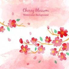 水彩樱花背景