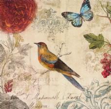 欧美花鸟装饰画