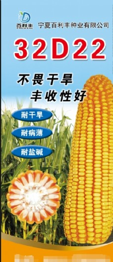 玉米种子展架