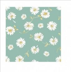 植物花朵花卉菊花四方连续底纹