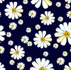 植物花卉菊花四方连续底纹
