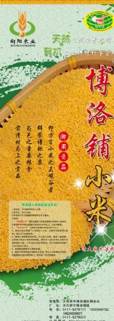 博洛铺小米展架