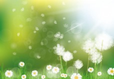 春季清新唯美背景素材