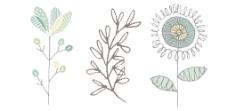 清新手绘花卉花朵素材