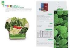 绿色蔬菜宣传画册