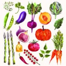素描手绘水果食物矢量图