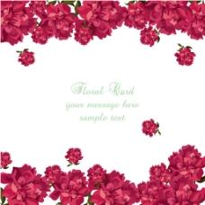 手绘红色玫瑰装饰花边背景