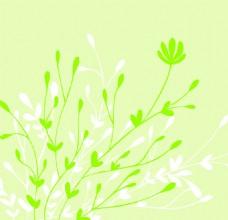 绿色植物花卉背景