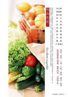 蔬菜宣传展板