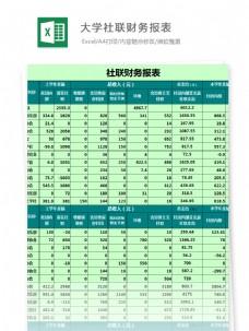 大学社联财务报表Excel图表