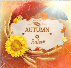 秋天主題銷售背景