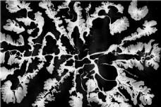 黑白花纹贴图
