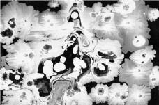 黑白花型贴图