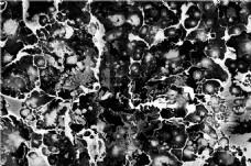 黑白点状素材