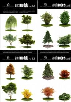 樹木灌木模型