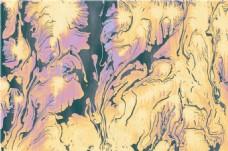 黄色花纹贴图