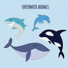 海洋卡通动物